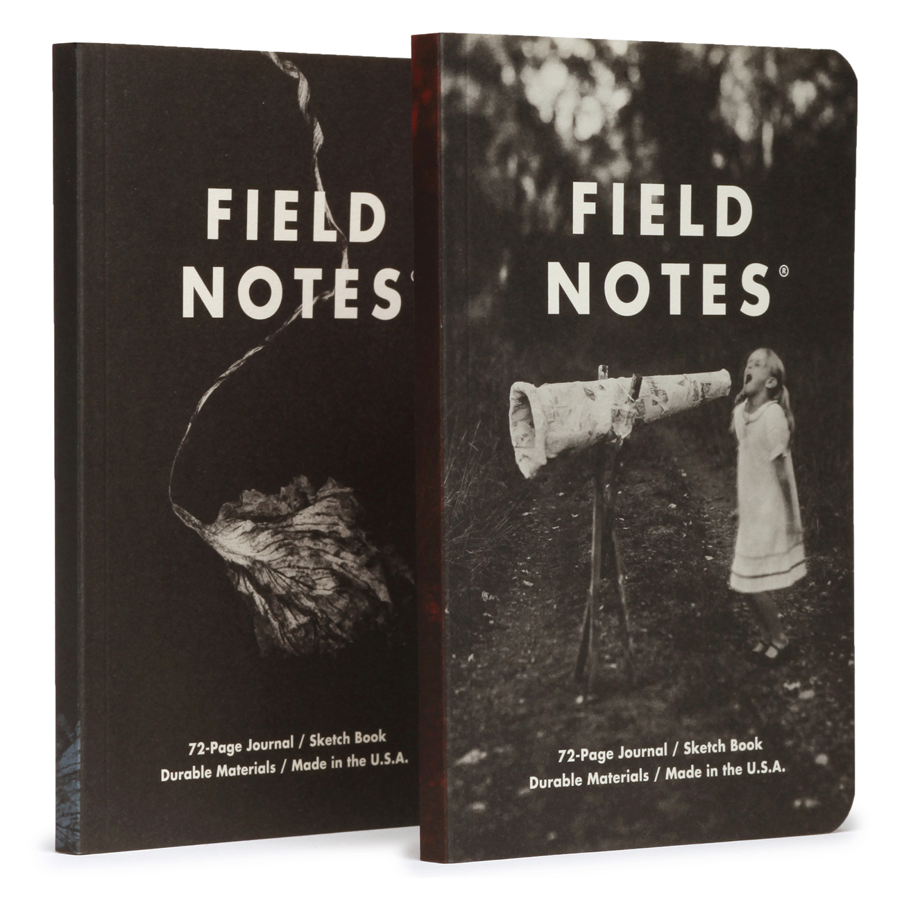 Field Notes, Maggie Rogers, Notizhefte, mystische Fotos auf Cover