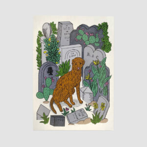 Postkarte, Hund auf Friedhof, illustriert, Sophia Martineck, DinA 6,