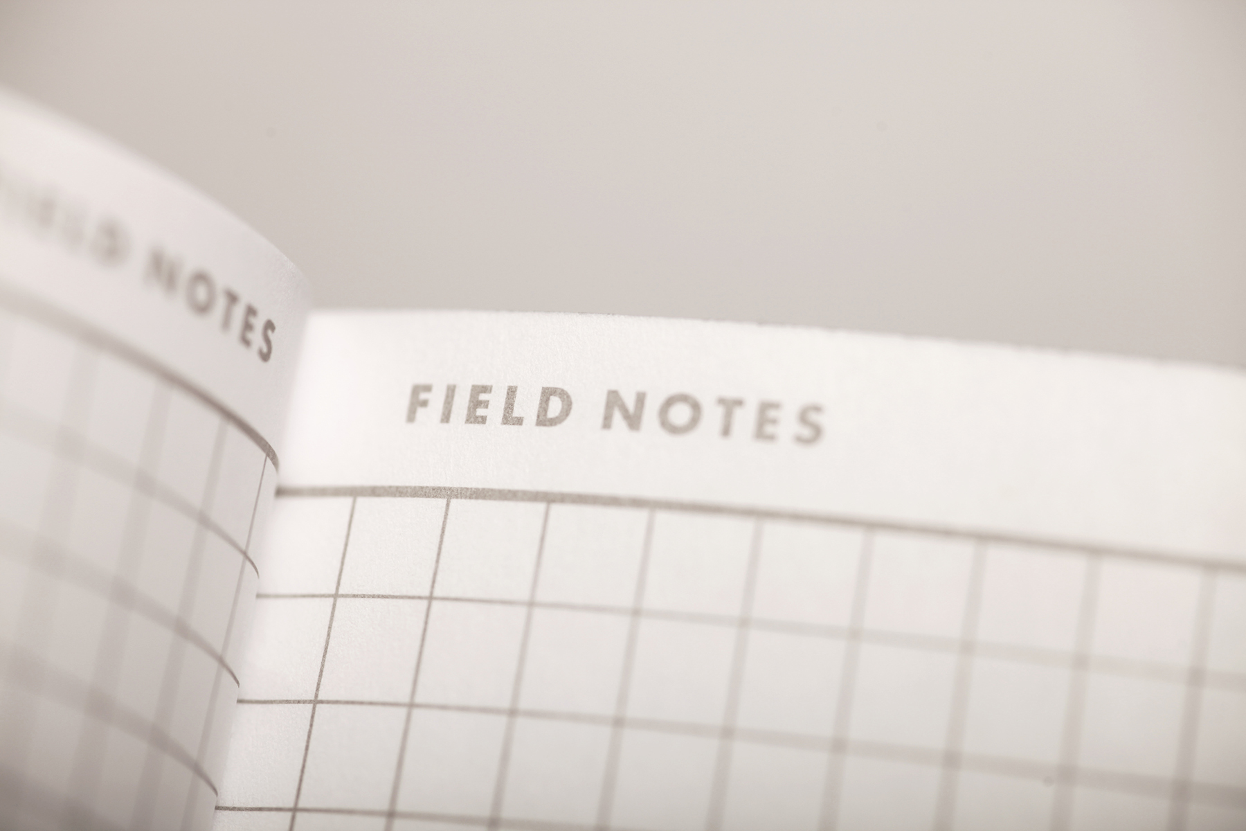 Field Notes, 10th Anniversary, Edition, Notizheft, Innenansicht, Detail,